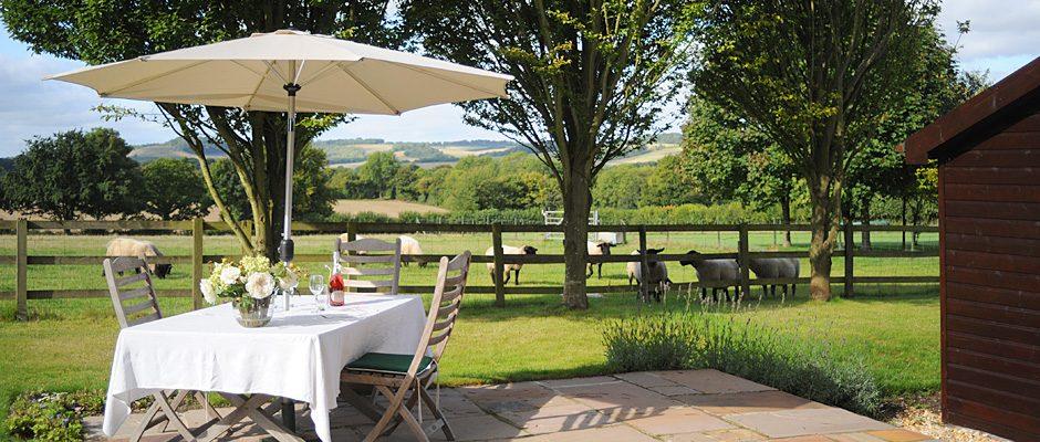 black-hedges-hampshire-terrace